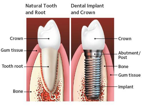 Dalal Dental Care